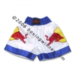 Muay Thai Shorts 2