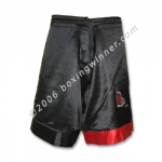 Fight Shorts  (MMA/Grappling/Vale Tudo) Front View