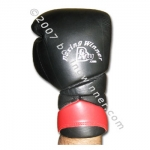Training / Sparring Gloves 2