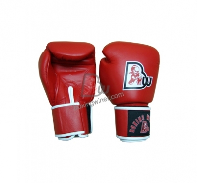 Training / Sparring Gloves